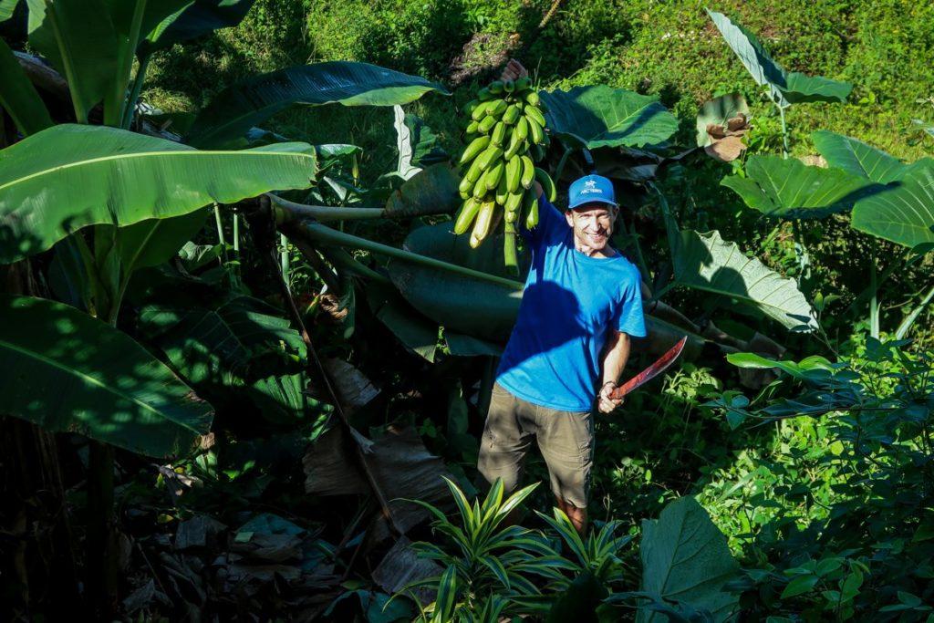 Banány naložíme na jeep a zavezeme do výrobny,